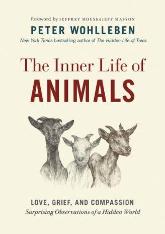 Inner Life of Animals